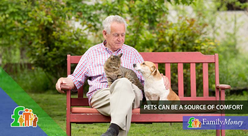 An elderly man with pets who are his companions and source of comfort