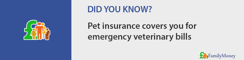 Pet insurance covers you for  emergency veterinary bills